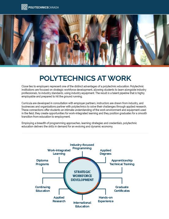 Polytechnics at Work